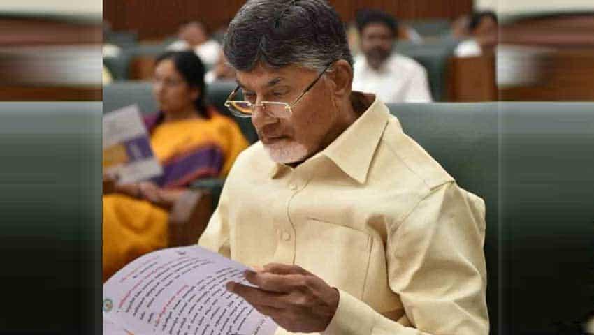 Andhra Pradesh Budget 2019: Revenue