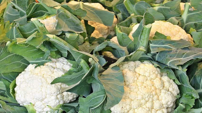 Cauliflower stem