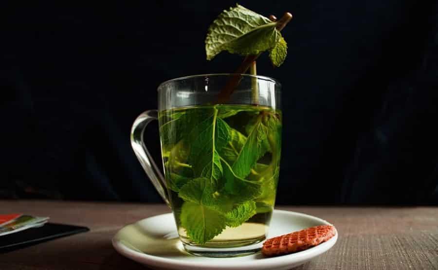 Sip on warm Moringa Green Teas and Green Coffees