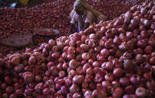 Onion Price In Rajasthan