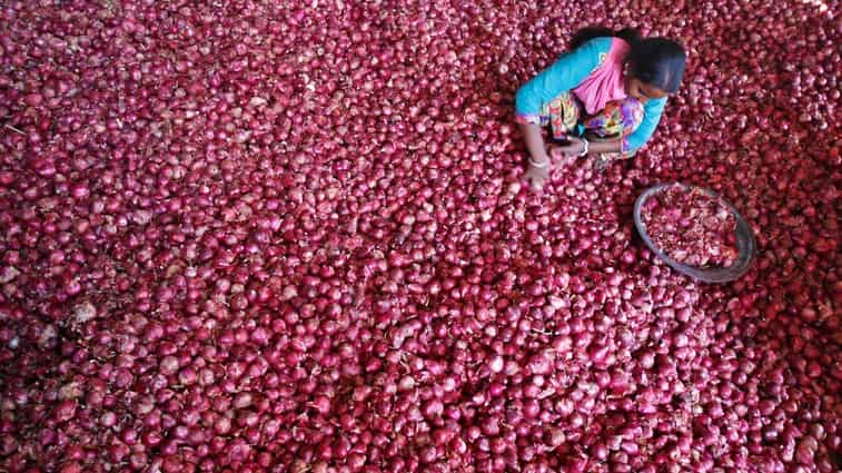 Onion Price In Delhi