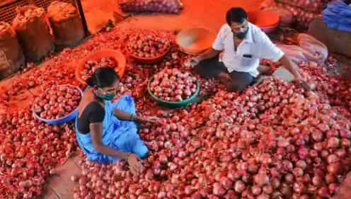 Why Onion Price Is Rising