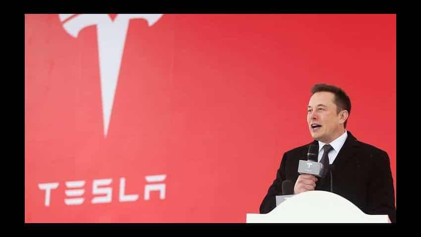 Tesla hare price