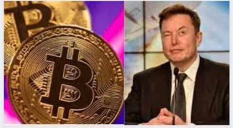 btc news update este bitcoin trader legal