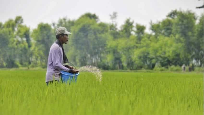 Fertiliser subsidy of Rs 28,655 cr in rabi season to benefit farmers, industry; to boost supply: ICRA