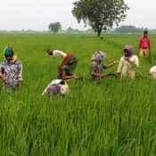 NABARD estimates Rs 75,612 crore credit potential for Odisha