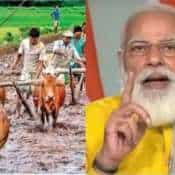 PM Kisan Samman Nidhi Yojana: Good news! Register, online apply on pmkisan.gov.in before June 30 to get 2 simultaneous installments - Check how to do it   GUIDE