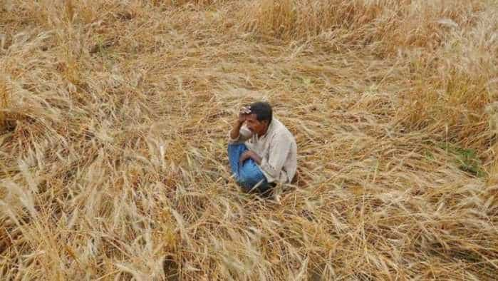 Rural demand to pick up on MSP hikes, farm loan waivers: Report