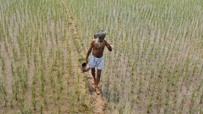 Now farm loans aggravate NPA crisis: Bad debt rises to nearly Rs 9,000 crore in Punjab alone