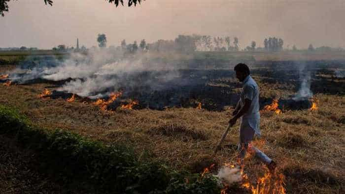 IKEA finds solution to stubble burning in Delhi NCR?