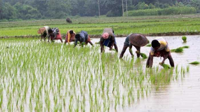 DeHaat: This startup gives agriculture services, financial aid; caters to 52,000 farmers