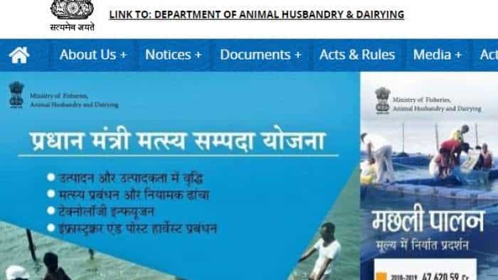 7th Pay Commission Latest News: Get prestigious job with Bumper pay!  Department of Fisheries offers Sarkari jobs