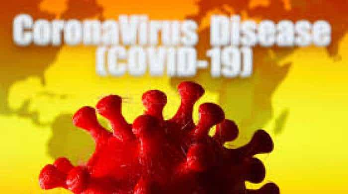 'How coronavirus jumped from animals to humans decoded'