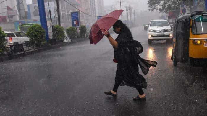 June records 'excess' rainfall, good precipitation expected in July: IMD