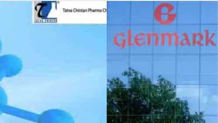 IPO Action Next Week: Glenmark Life Sciences IPO issue details, Tatva Chintan Pharma Chem Ltd IPO allotment updates—All INVESTORS need to know