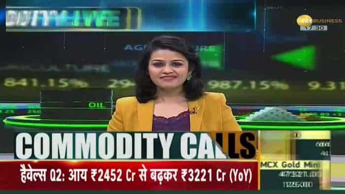 Commodities Live: Every big news related to Commodity Market; Oct 20, 2021