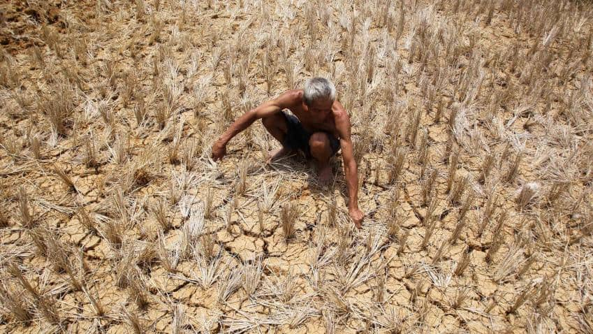 Rainfall in drought-hit states in next three-five days: Indian Meteorological Department