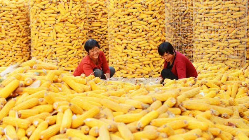 China's official manufacturing PMI drops in July