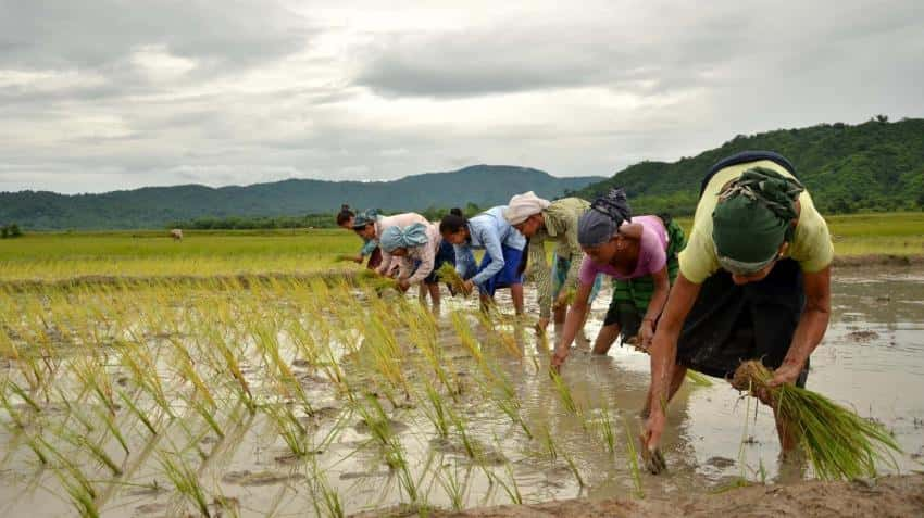 Govt earmarks nearly Rs 1,000 crore to double farmers' income