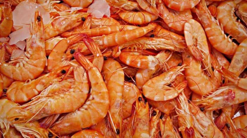 Treat seafood as agricultural produce; exempt it from the GST: SEAI
