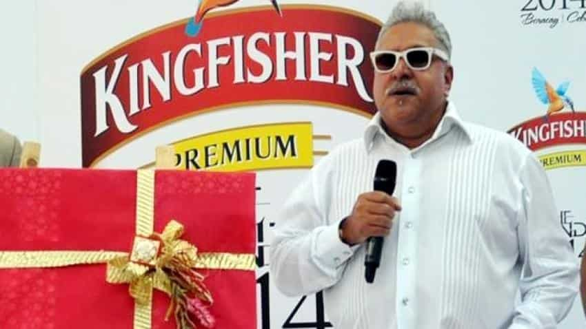 Vijay Mallya arrest: India will have to go through long process to bring him back