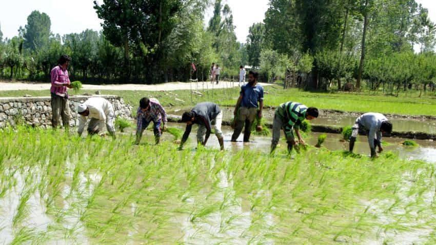 Maharashtra's farm loan waiver to worsen its fiscal deficit