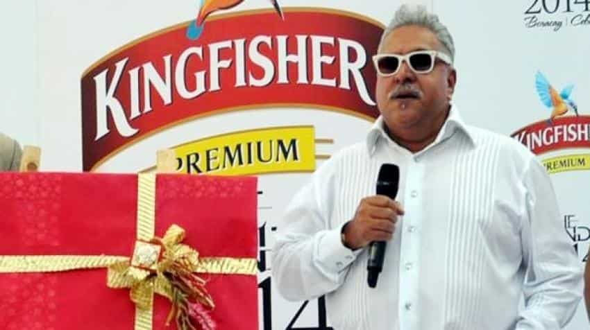 Vijay Mallya to get same treatment as other prisoners: India to UK