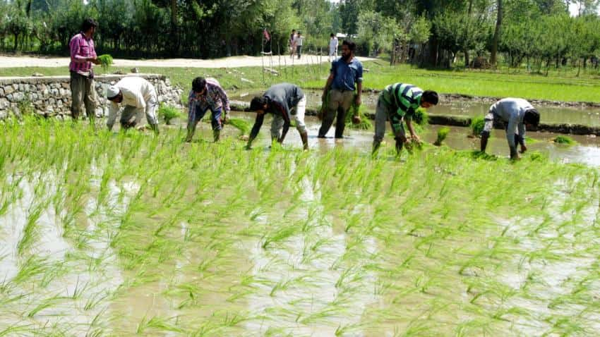 Nod for raising extra budgetary resources for pending irrigation projects