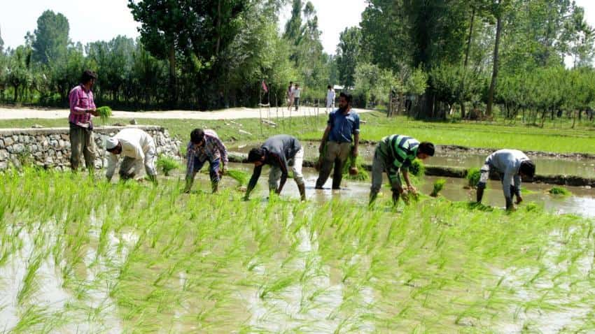 5 lakh farmers to benefit from climate resilient agriculture in Tamil Nadu