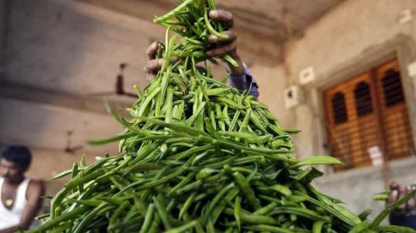 FM launches options trading in guarseed; says will benefit farmers