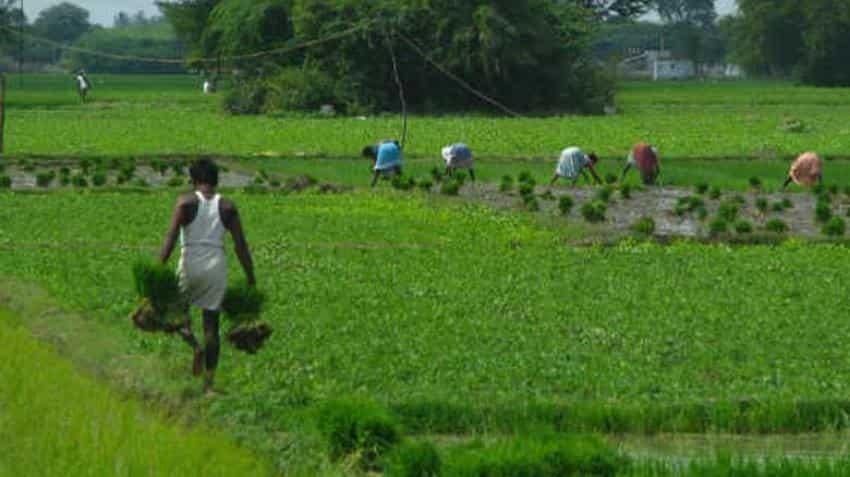 Budget 2018: Farm output, farmers' income get priority