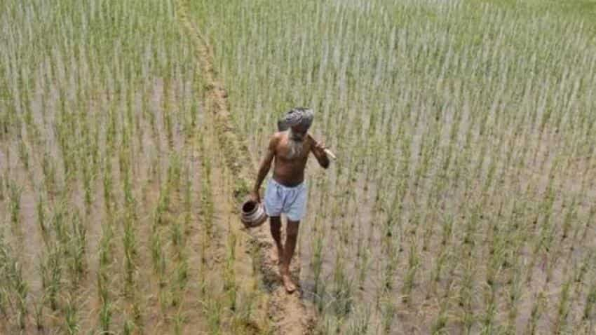 Crop insurance scheme:  PM Narendra Modi government`s flagship plan loses sheen, sees negative growth as coverage area reduces