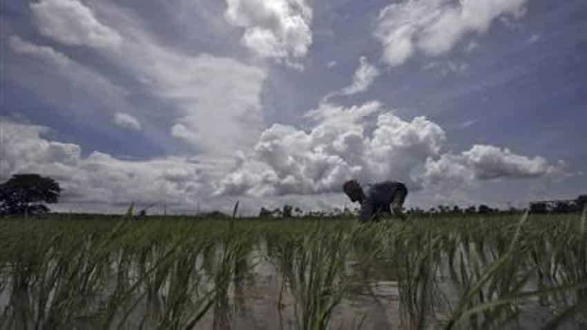 Monsoon rains in India seen at 100% of long term average: Skymet forecast