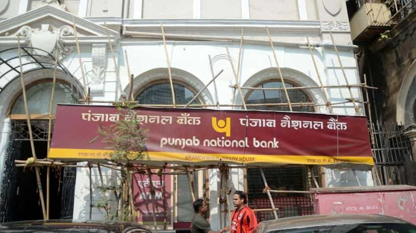 Big wilful defaulters owe PNB Rs 15,172 crore