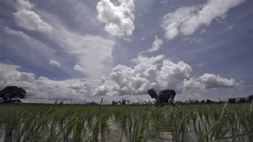 Monsoon forecast: Rains in India seen slowing after strong start