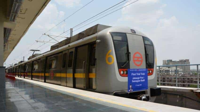 Peacock disrupts service on Delhi Metro's Yellow Line
