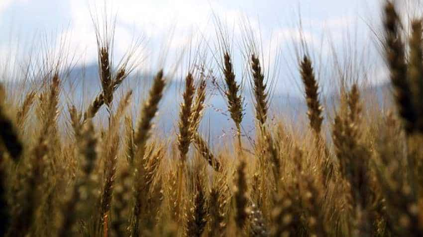 Pradhan Mantri Fasal Bima Yojana tweaked! Good news for farmers, bad for states, insurance companies