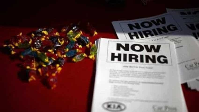 Job crisis in India: Book advises to prepare for short-term work options