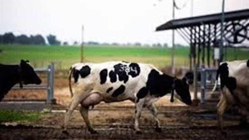 MoooFarm to train 2 lakh farmers in dairy skills