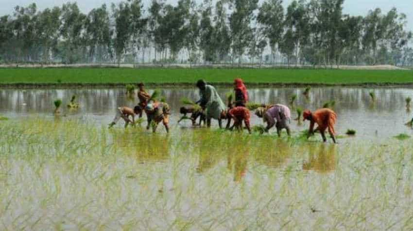 Cabinet clears India's first agri export policy to double farmers' income