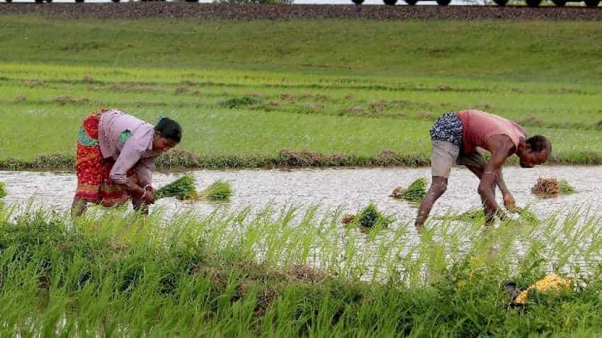 As agriculture turns uneconomic, farmers turn daily-wagers for survival (Economy Feature)