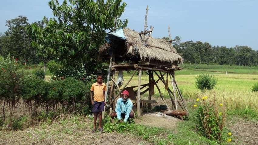 Rs 4000 per acre per season! Report claims this Modi govt move to finally bring 'Achche Din' for farmers