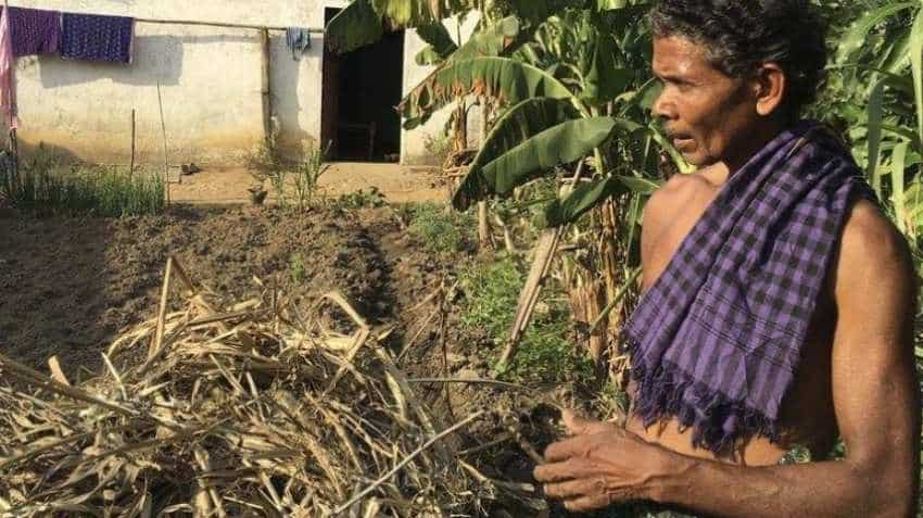 Budget 2019: Joy for farmers coming? Moderate interest subsidy for short term agri credit likely