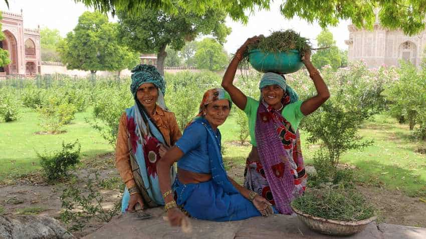 Budget 2019: Piyush Goyal announces allotment of Rs 60,000 crore in MGNREGA; what farmers should know
