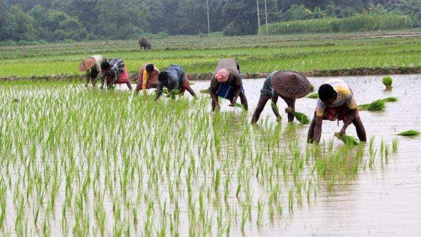 Budget 2019 announcement: Rs 6,000 investment support to farmers, says Piyush Goyal