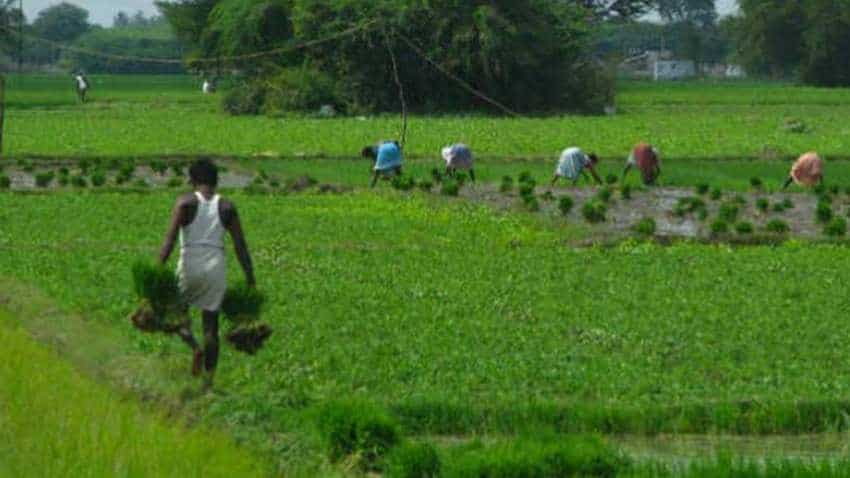 Odisha government sanctions farmers' projects worth Rs 350cr
