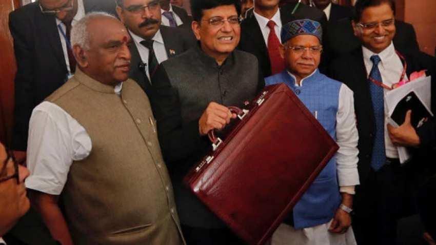Parliament passes Interim Budget 2019-20