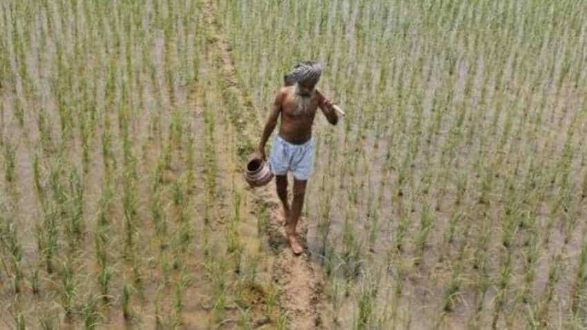 PM-KISAN to provide multiple benefits to farmers, says CEA