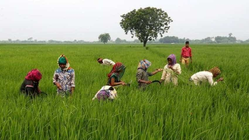 Rajasthan uploads over 1 lakh farmers' applications on PM-KISAN portal