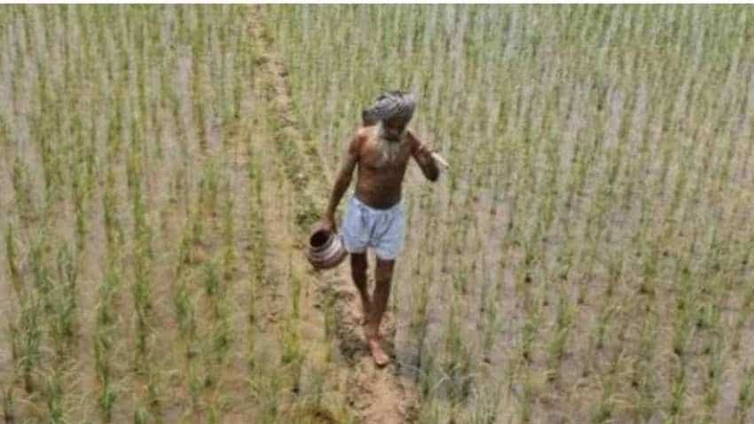 PM Kisan Samman Nidhi Yojana: Farmers alerts! How to register